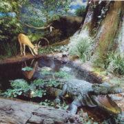 自然館の展示より。約230万年前の甲賀市を再現