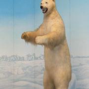 立った北極熊